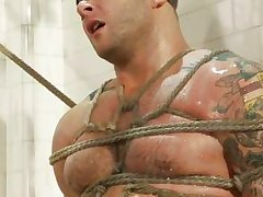 muscled gay guy tied and pleasured lower than the washroom